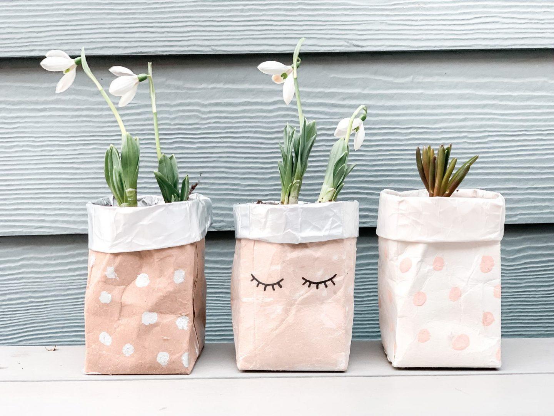 Tetrapak Plant Pots